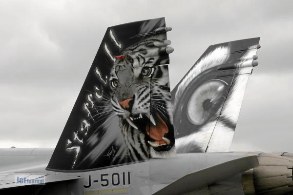 Tigermeet2014 3